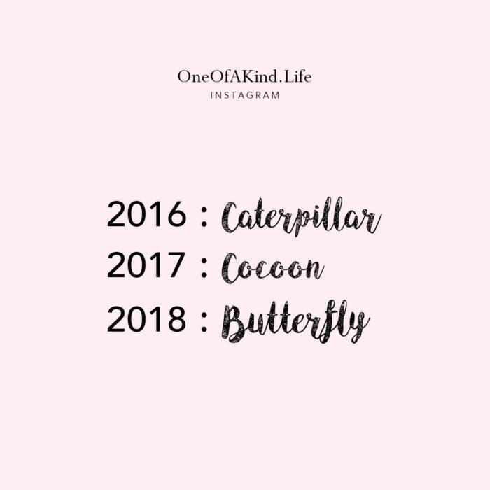 caterpillar, cocoon, butterfly