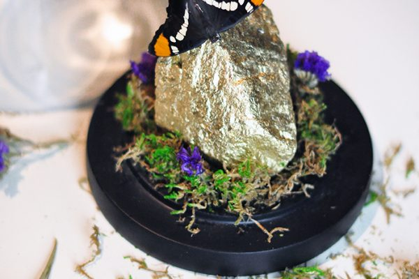 DIY Lucky Butterfly Dome Display