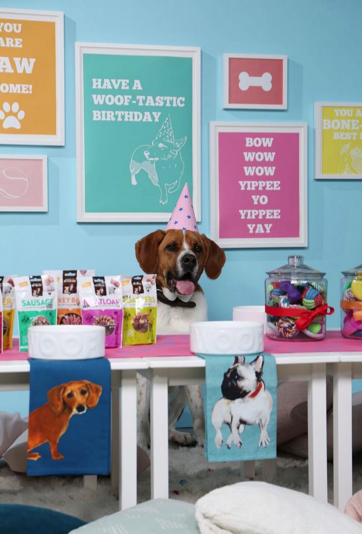 doggy birthday party ideas