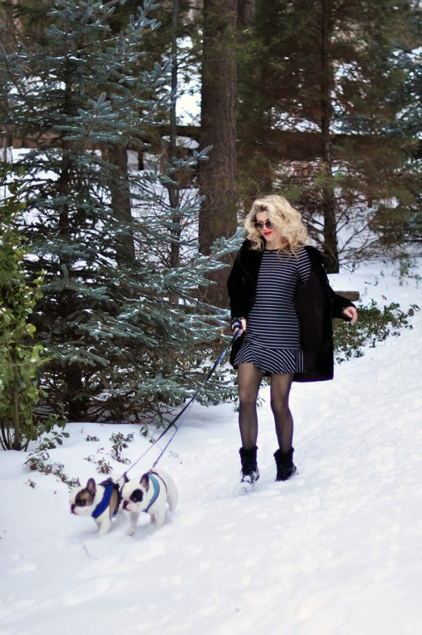 walking the dogs in the snow-french bulldogs-dresses in the snow-sorel snow boots