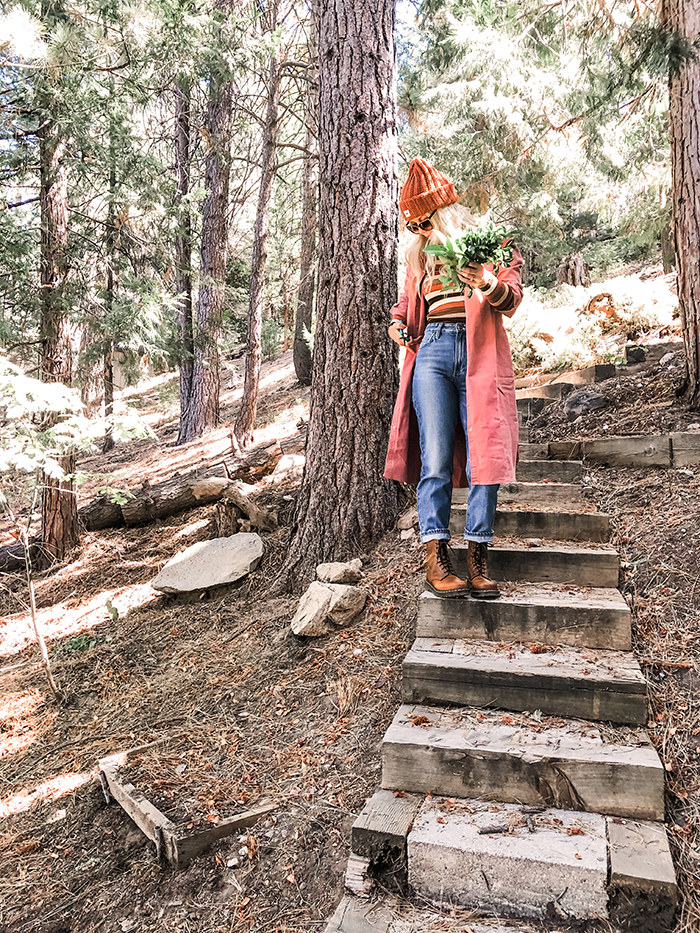 fall winter style, lee vintage modern jeans, lake arrowhead foraging in the woods