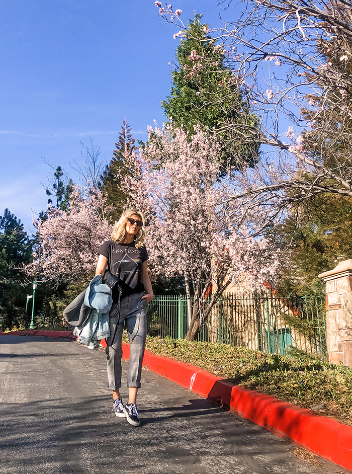 casual cool spring outfit, cherry blossom trees blooming, blue skies, lake arrowhead