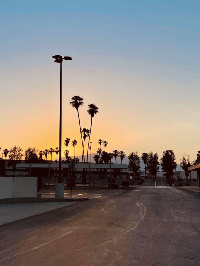 palm trees, sunset, city sunset, california sunset, palms and parking lots, parking lot sunset, san bernardino