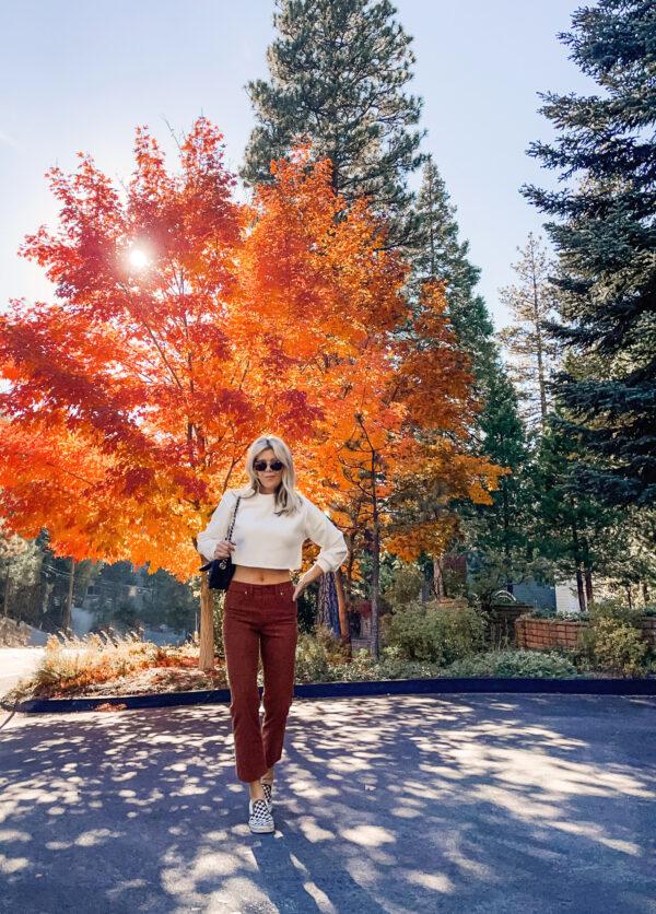 rust corduroy pants, white crop top, cropped sweatshirt, vans, checkered vans, orange leaves, fall trees, fall tree colors, fall colors