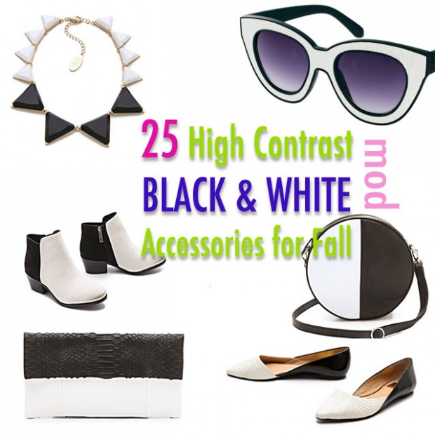 25- high contrast black and white accessories