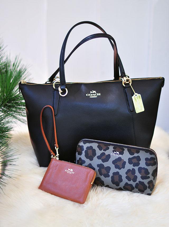 Coach bag giveaway_loveMaegan