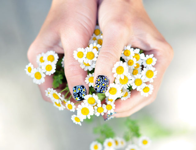 Cute Daisy Nails on Black background