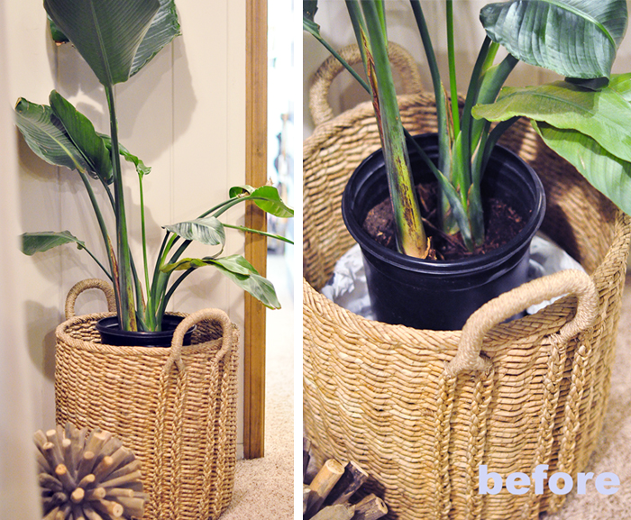 diy faux moss planter cover indoor tropical plant