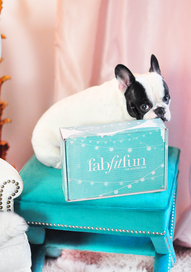 FabFitFun Box with French Bulldog_ Winter 2015