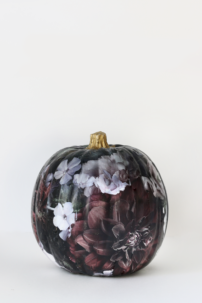 floral-pumpkin-tutorial_edited-1