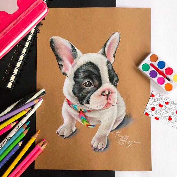 French bulldog art_tonya bonya