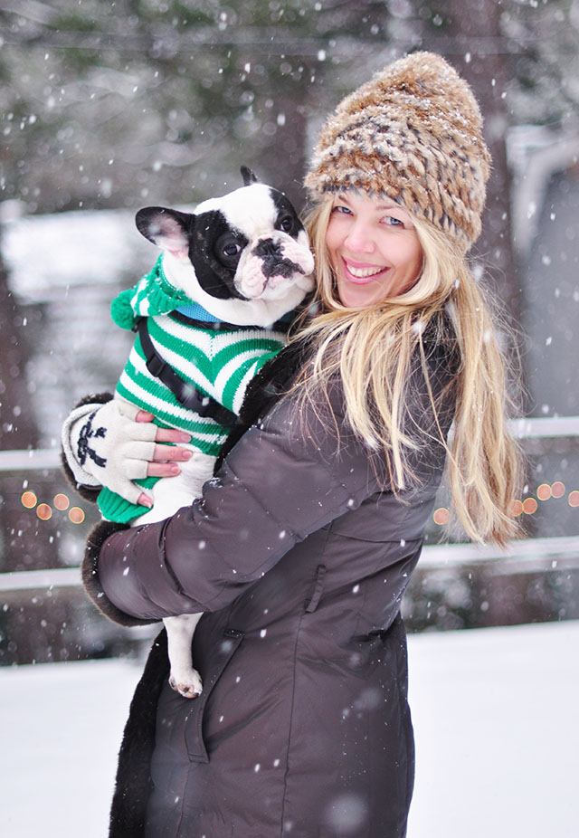 NYE-Snow-Frenchie