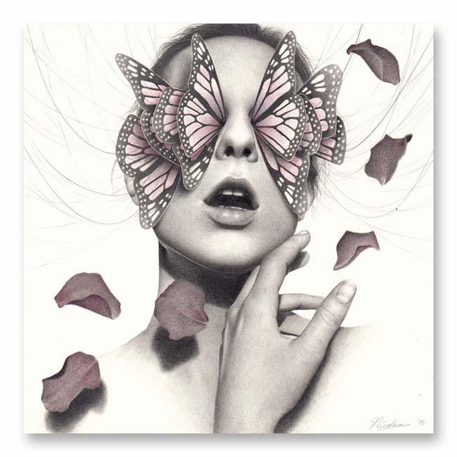 Nicolaus Ferry_butterflies 2
