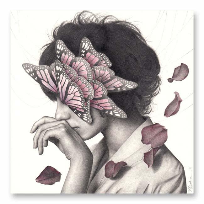 Nicolaus Ferry_butterflies
