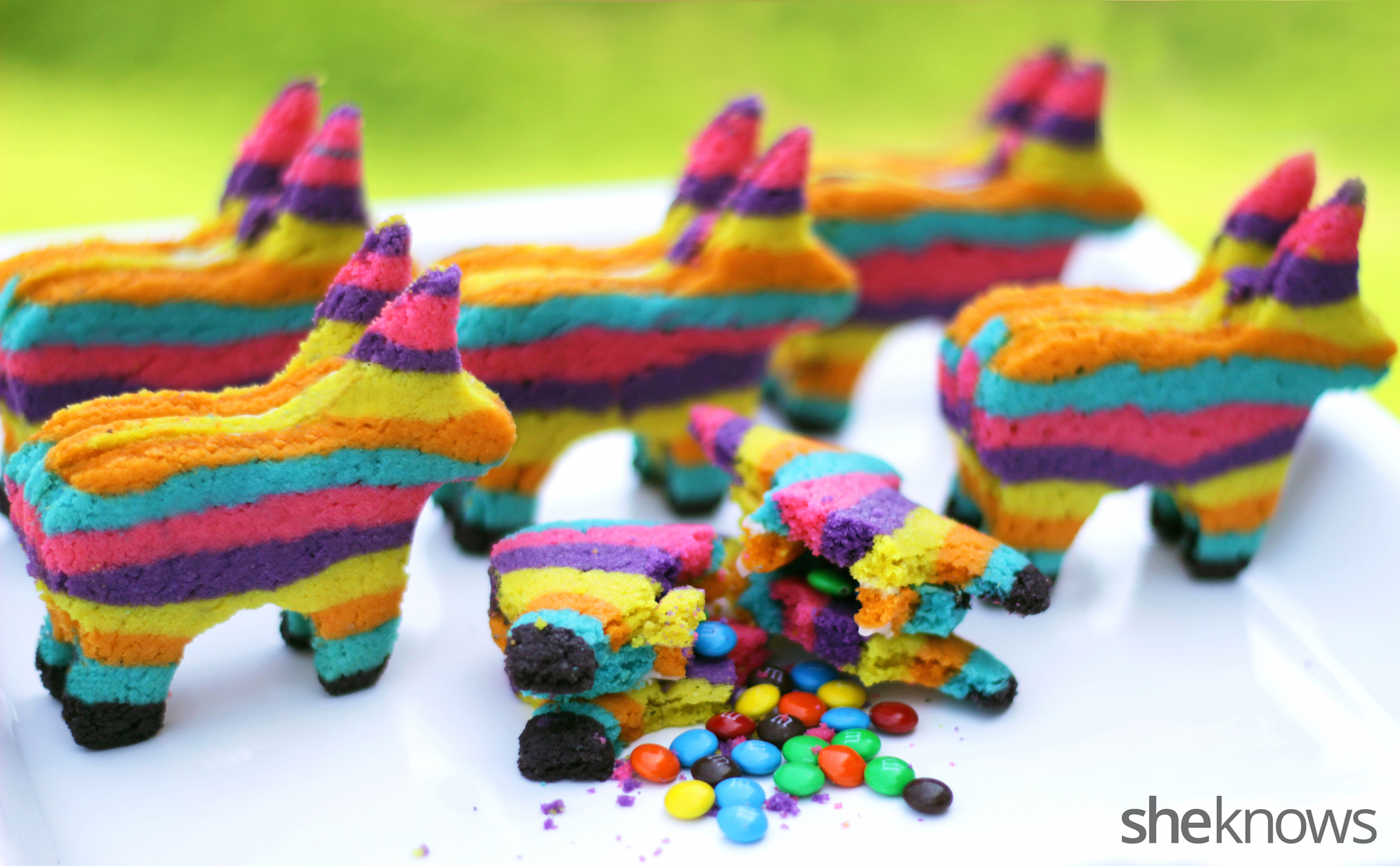 Pinata_Cookies_12-wm