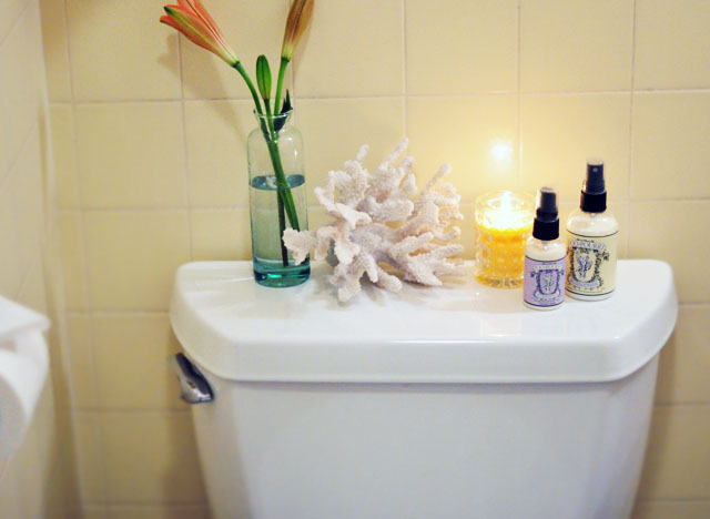 PooPourri in the guest bathroom-toilet styling