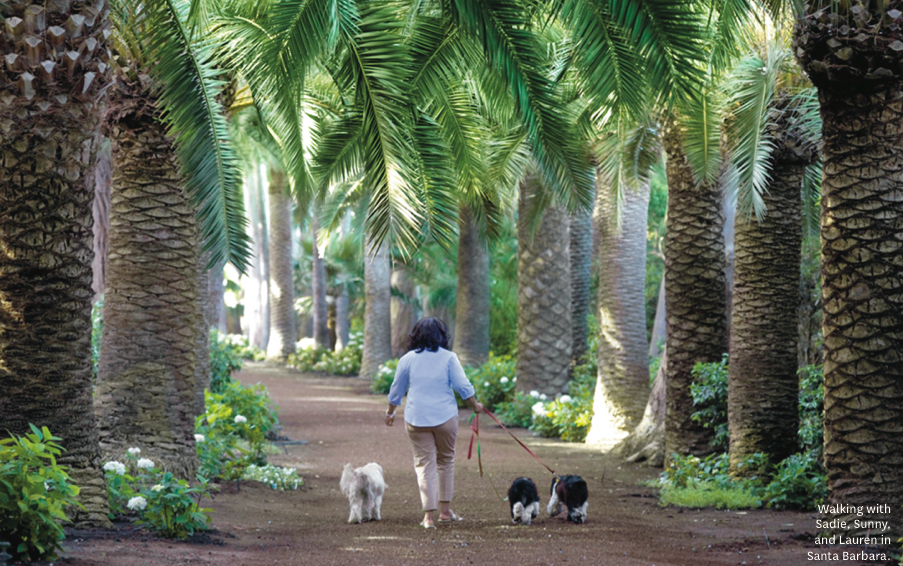Oprah walking with her dogs