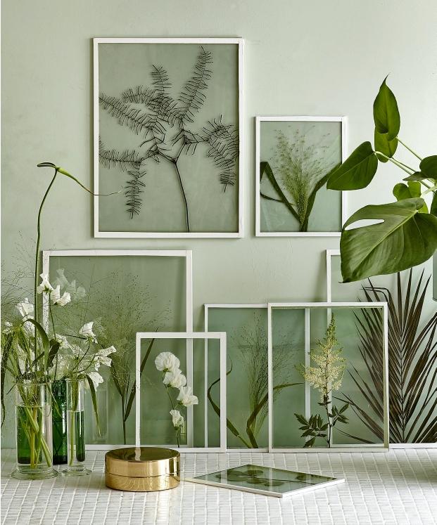 Floating Botanical Art