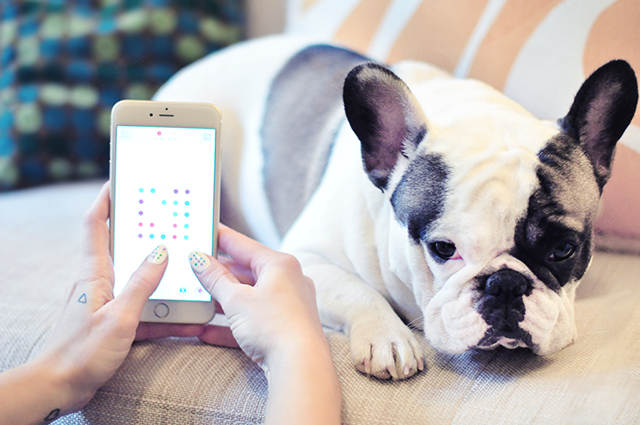 Two Dots + Frenchie