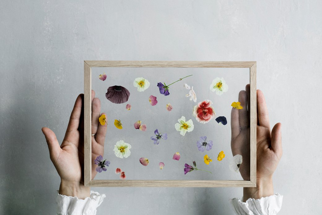 how to make minimalist framed floating leaves and flowers diy