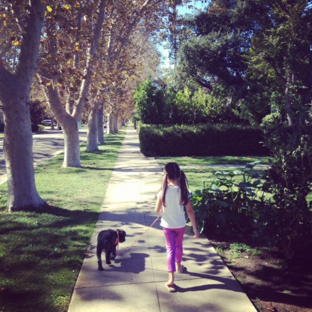 camilla walking dog