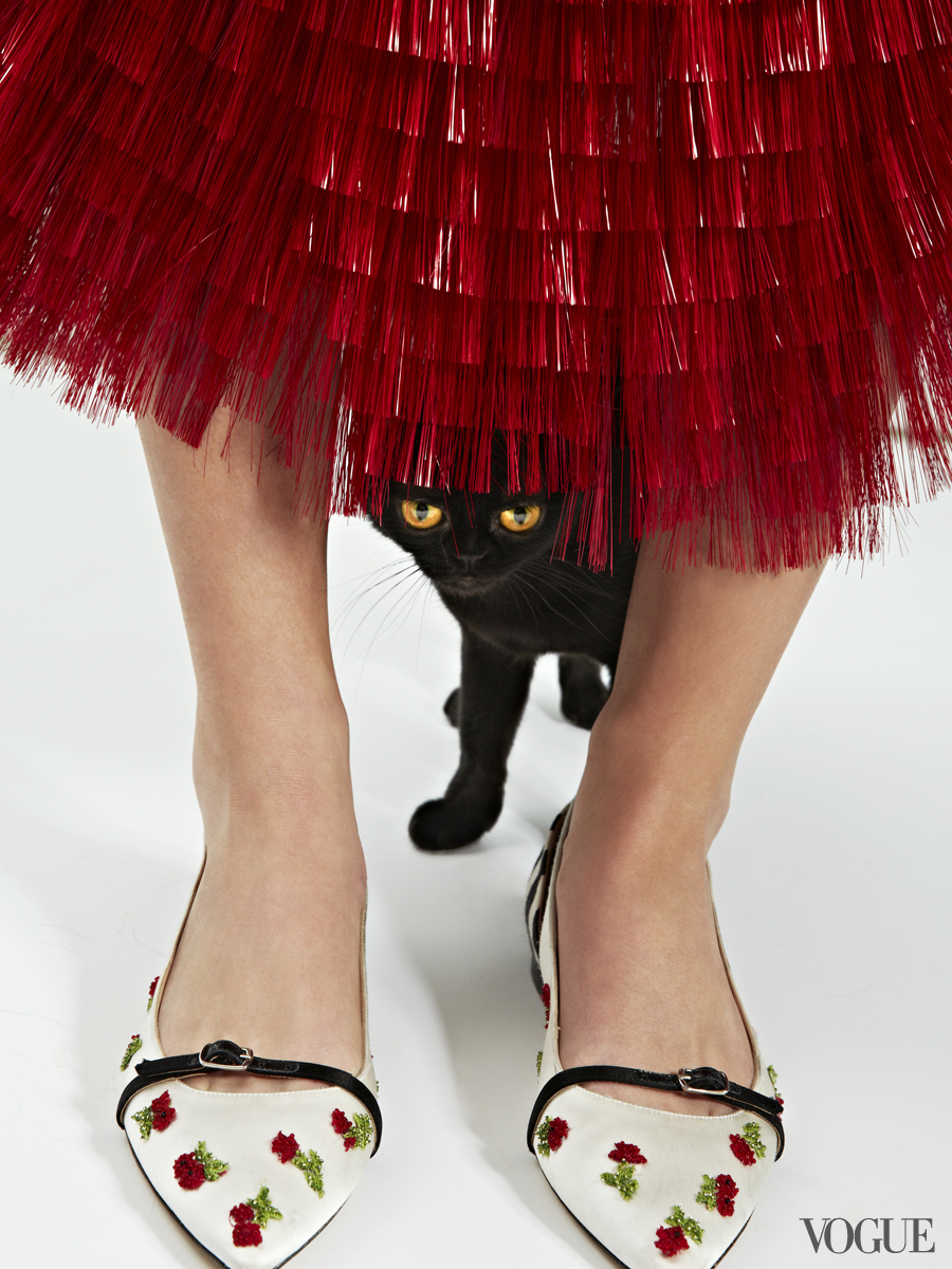 cats-kittens-flats-shoes-02_204106648485