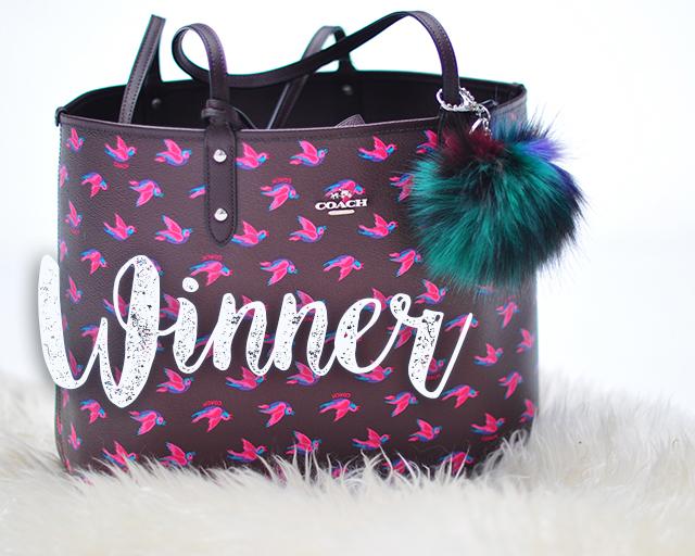 love Maegan blogger giveaways, Coach bag