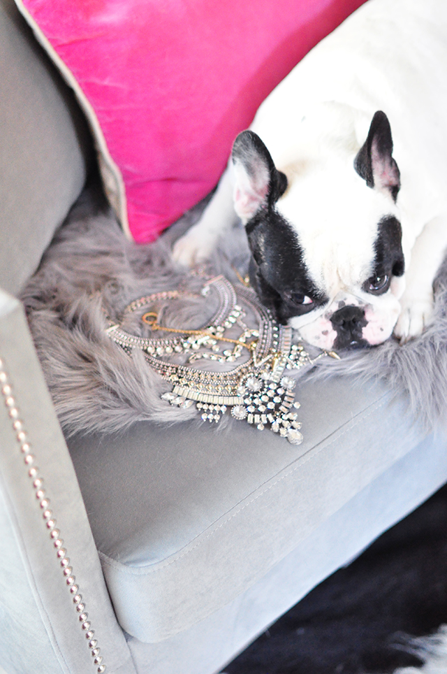 french bulldog_necklaces