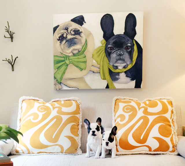 frenchie pups under the frenchie + pug portrait