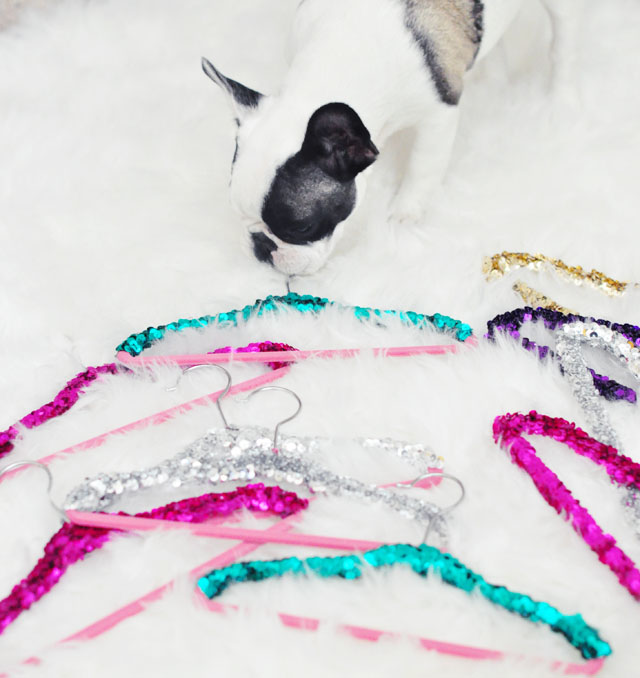 frenchie with sequin princess hangers