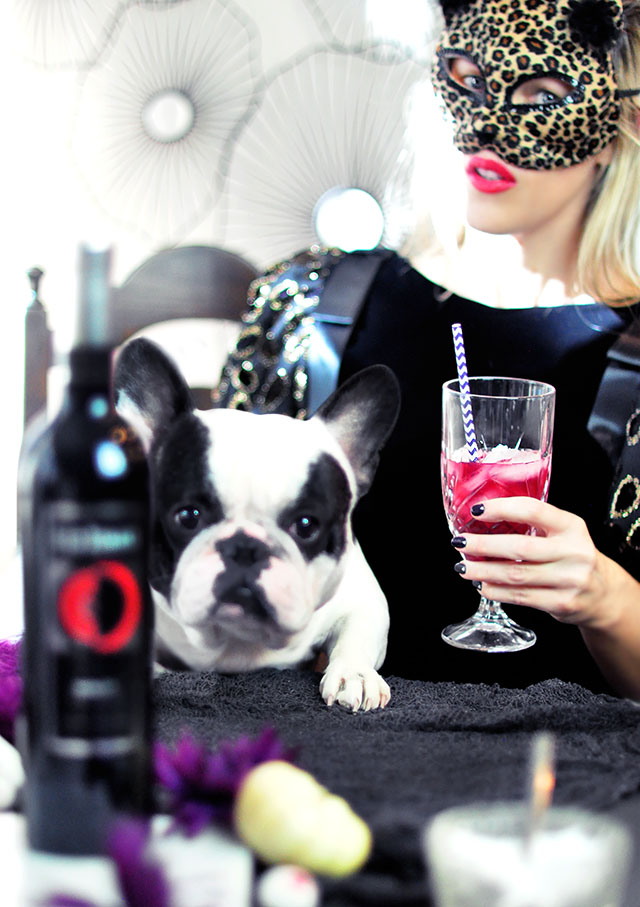 halloween table_leopard mask _ french bulldog_merlot winetail