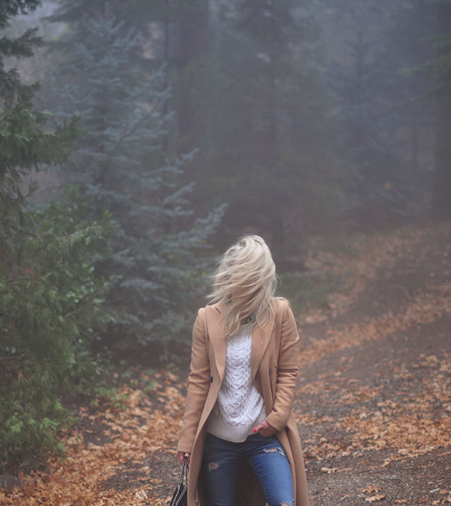 in-the-fog_in-the-forest