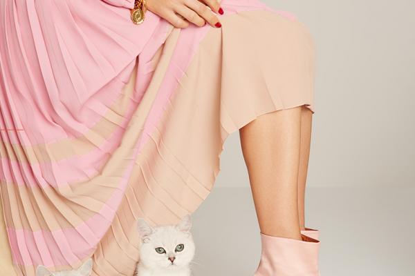 kittens and kitten heels