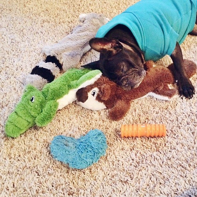 leroy with his toys