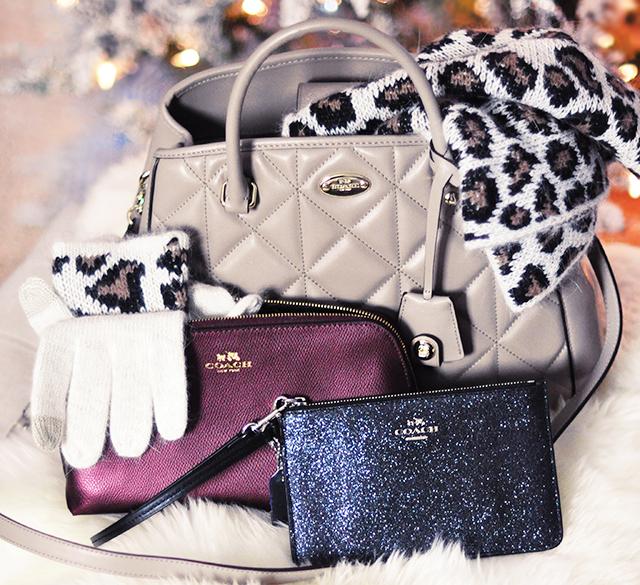 loveMaegan Coach Bags Giveaway _December 2015