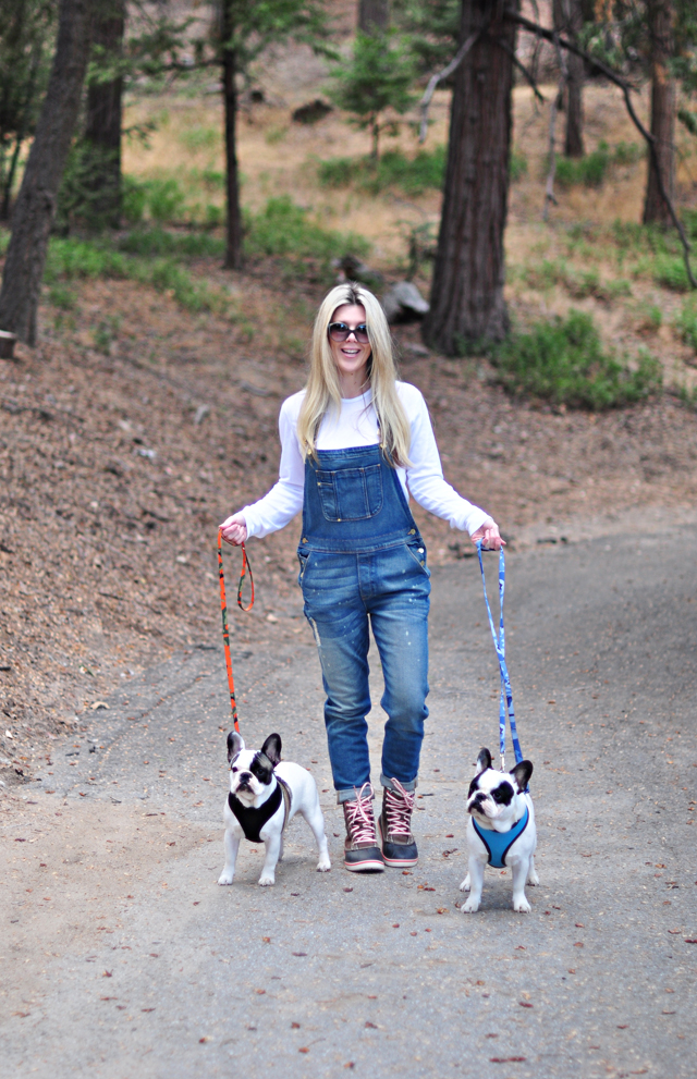 overalls for dog walks