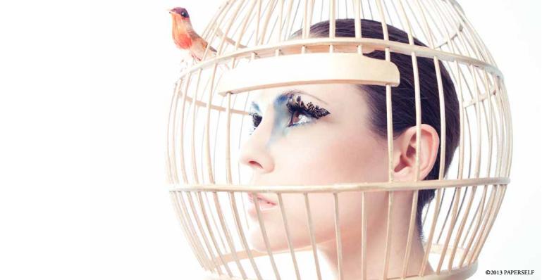 paper eyelashes-birds