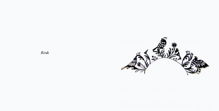 paper lashes-birds