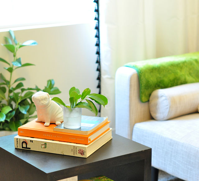 playful coffee table vignette