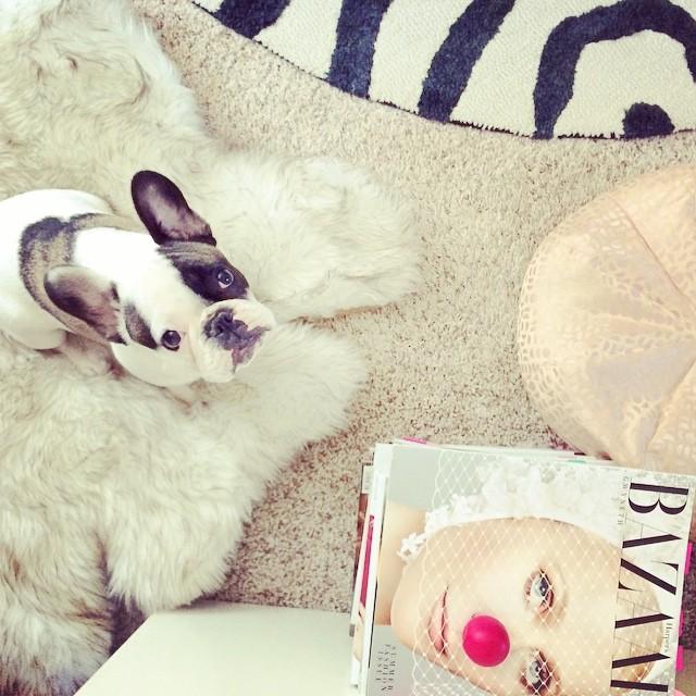 randy with magazine
