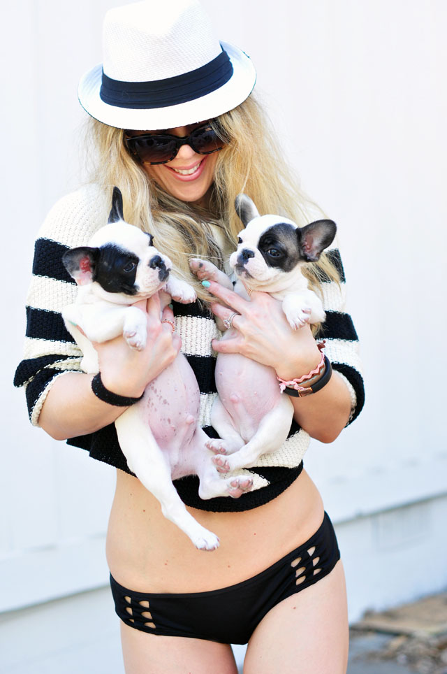 spring swimwear and puppies