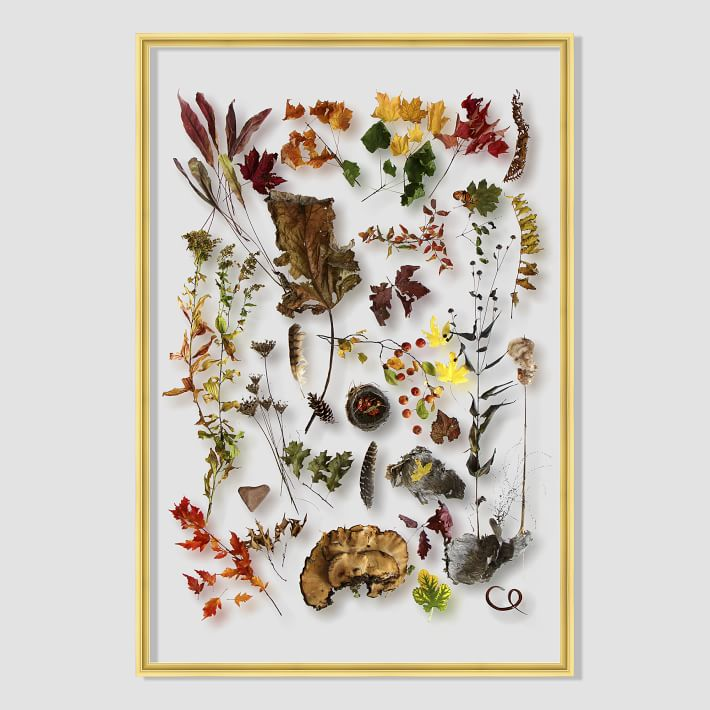still-acrylic-wall-art-autumn-botanicals-1-o