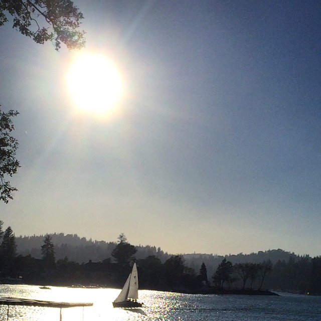sun and sail on the lake