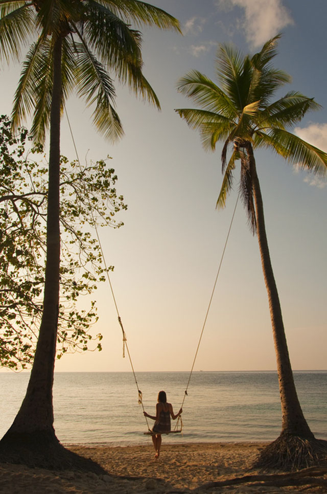 swinging from palms on the beach