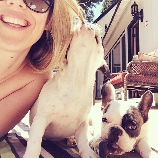 tanning with puppies