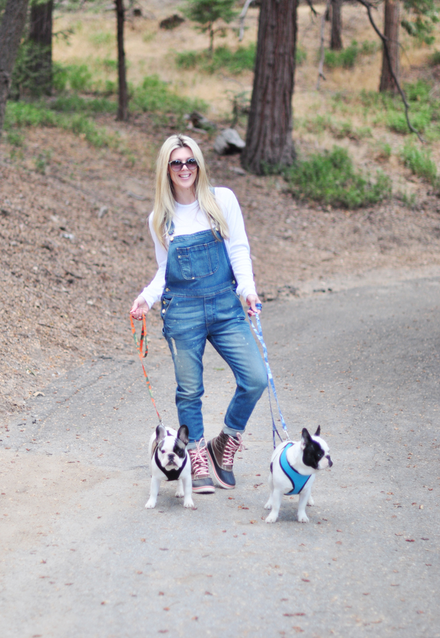 walking the dogs in overalls