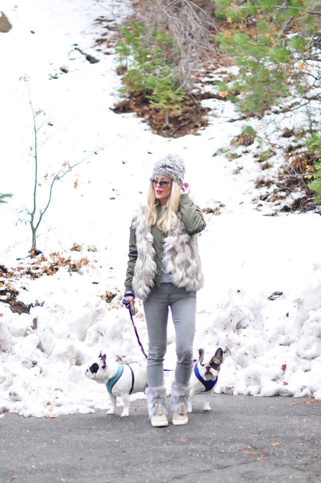 walking-the-dogs-in-the-snow