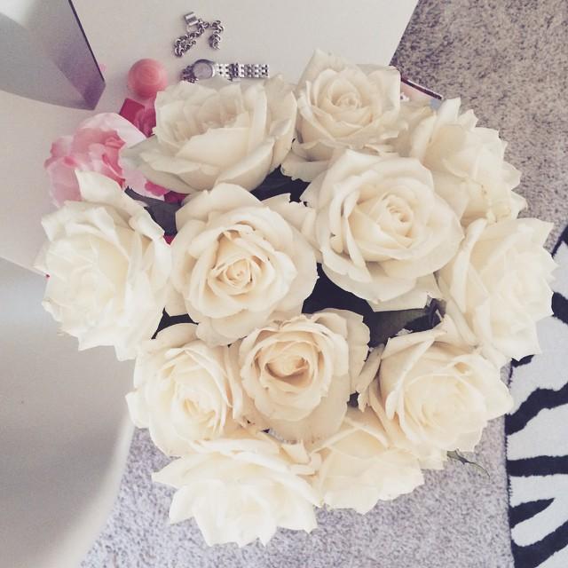 white roses_zebra rug