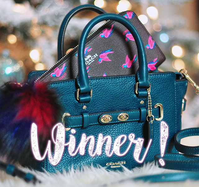 winner-coach-bag
